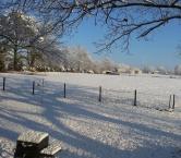 Winter in Alabama - Kathleen M