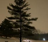 Snow scene - Debbie Ashcraft