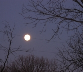 Winter Moon from Teresa M
